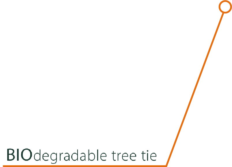 BIOdegradable tree tie